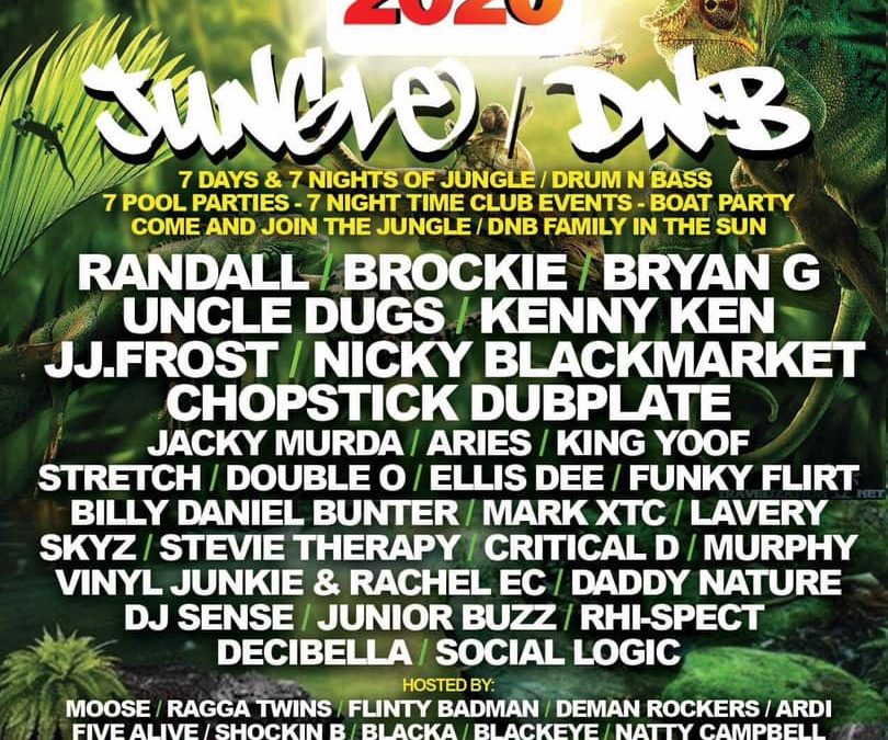 Jungle and D'n'B Line Up Announcement for Unity 2020!